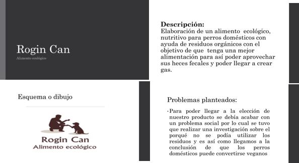 """Figura 3. Algunos elementos de la ficha """"Rogin Can: Alimento ecológico"""""""